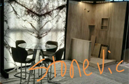 StoneVic at  Chicago Coverings